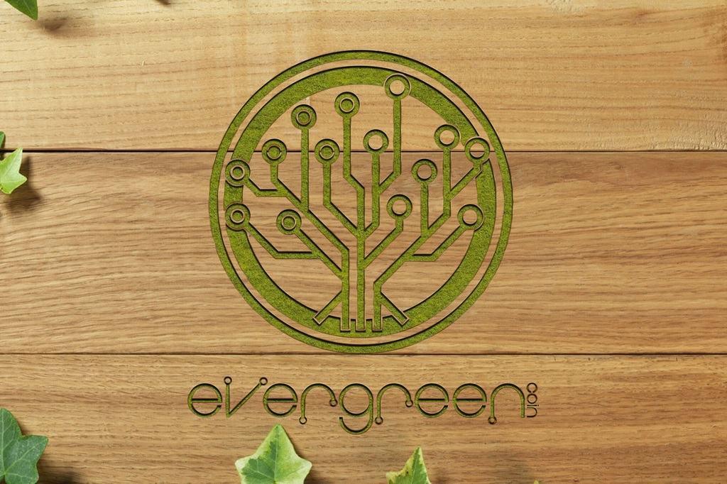 EverGreenCoin (EGC)